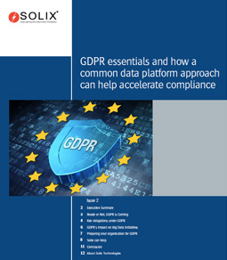 GDPR essentials and how a common data platform approach can help accelerate compliance