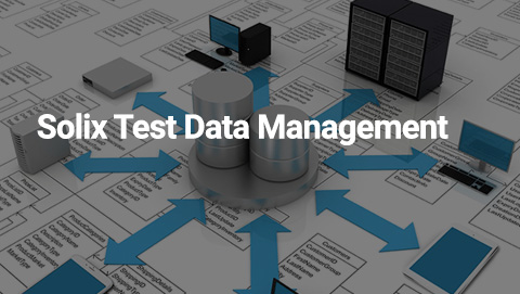 Solix Test Data Management