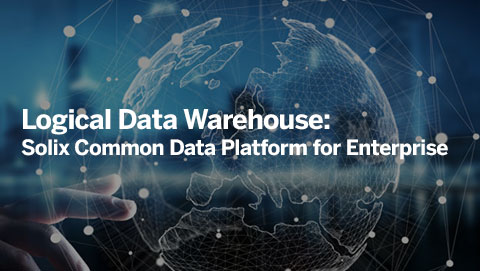Logical Data Warehouse: Solix Common Data Platform for Enterprise
