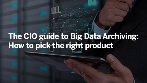 The CIO guide to Big Data Archiving: How to pick the right product
